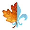 Quebec: As Entrevistas Para Obtenção do CSQ Finalmente Começaram