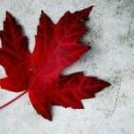 Termos e nomenclaturas  para imigração no Canadá.